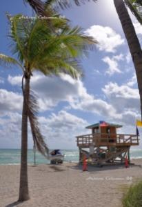 Sunny Isles Beach Lifeguard